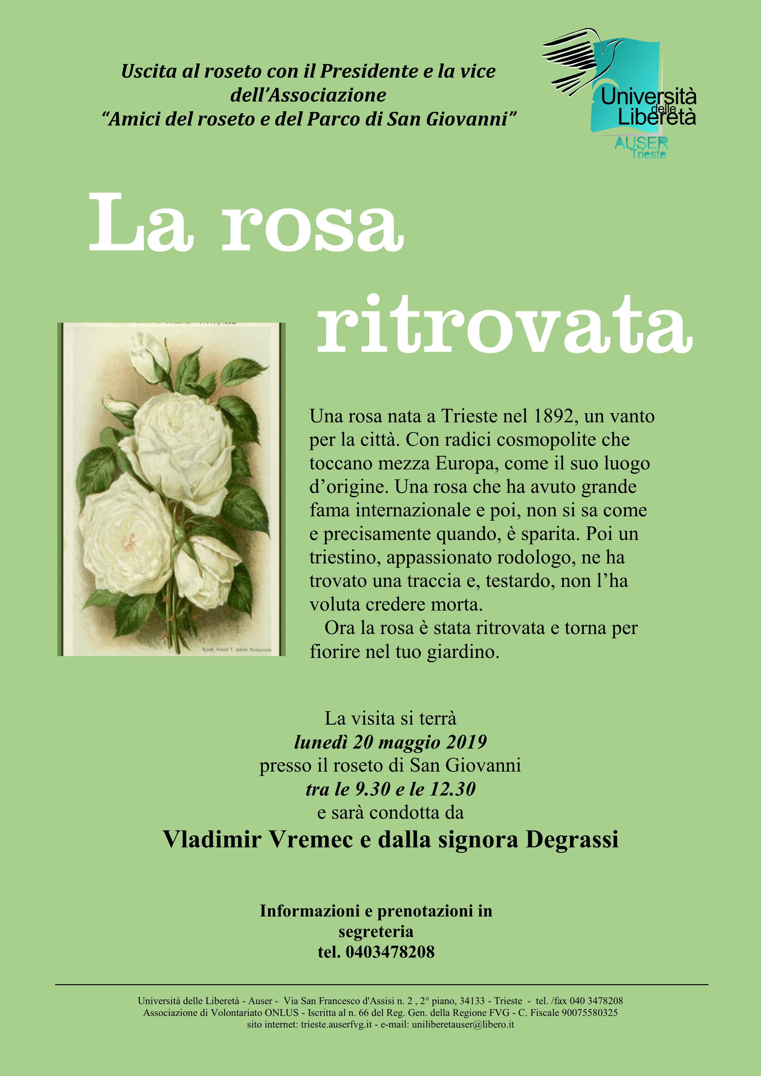 La rosa ritrovata1